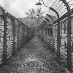 Concentration Camps: A Painful History 19