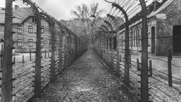 Concentration Camps: A Painful History 9