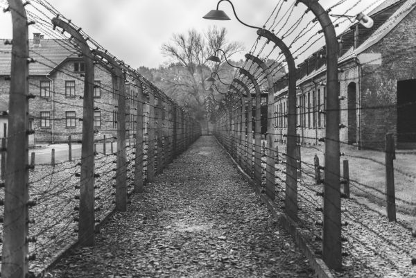 Concentration Camps: A Painful History 13