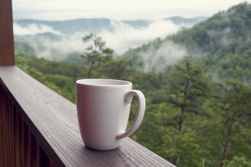 Smoky Mountain Vacation: The Ultimate Guide 96