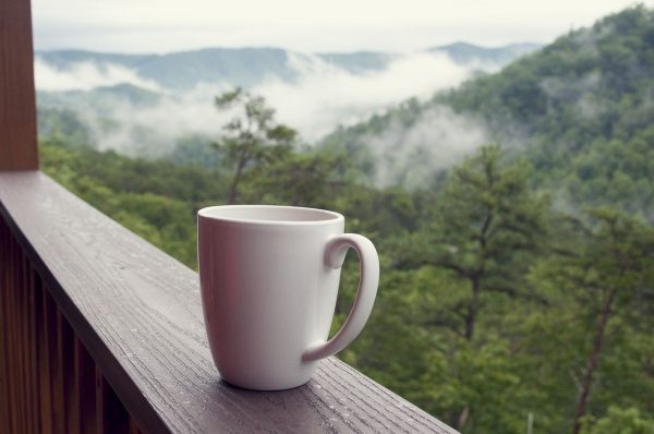 Smoky Mountain Vacation: The Ultimate Guide 4