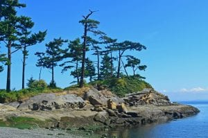 San Juan Islands: 9 Amazing Things To Know 4