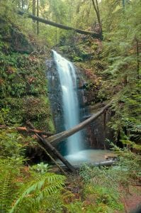 Camping Southern Oregon: 17 Irresistible Places to See! 11