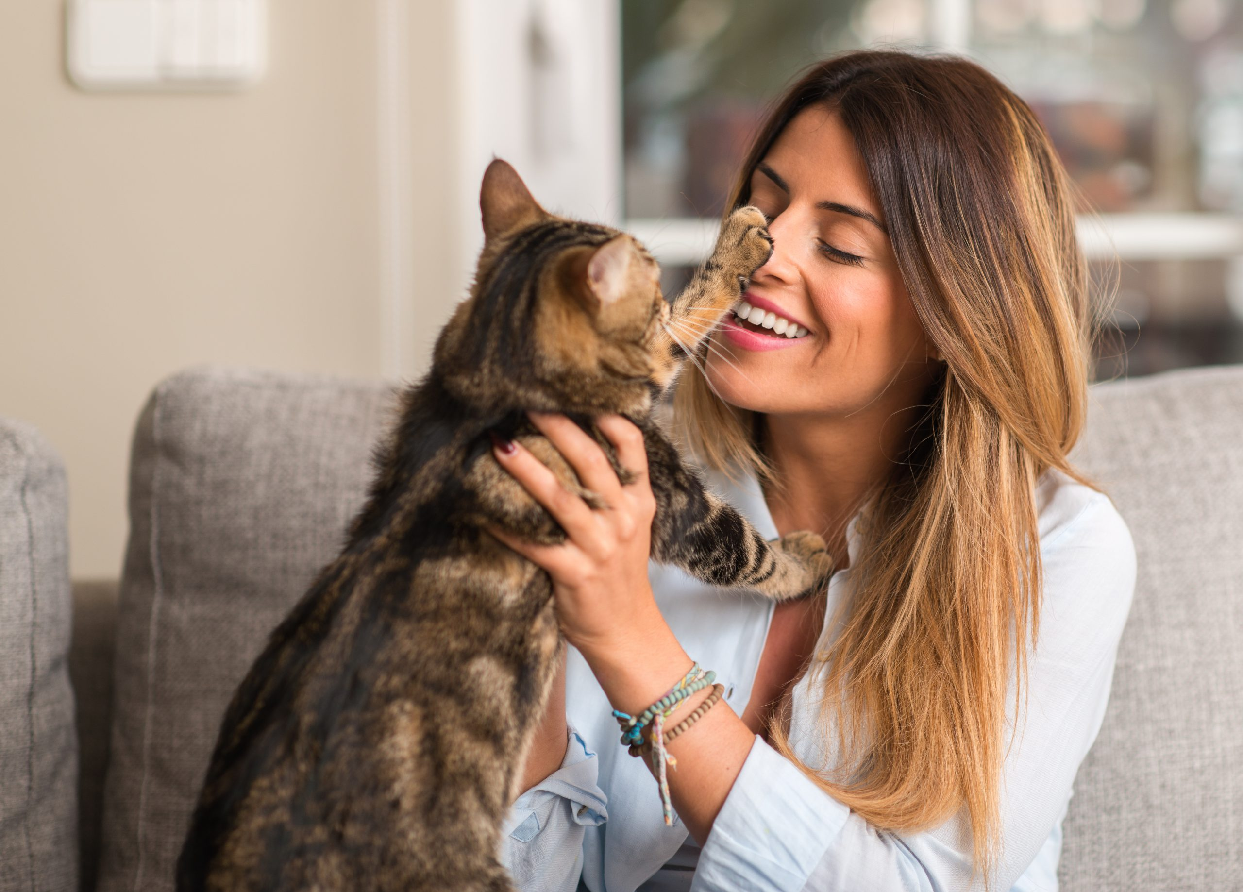 3 Tips On How To Communicate With Your Cat 1