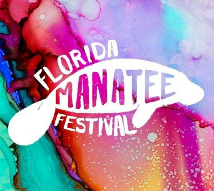 Florida Manatee Festival: All Exciting Things About It 1
