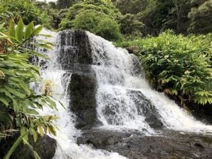 Two tiered waterfall