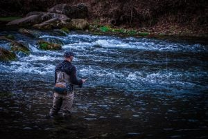 OzarkChronicles.com | Barren Fork Creek