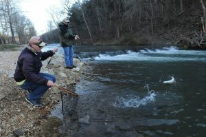 Love 'em, let 'em go during catch and release trout season at Roaring River