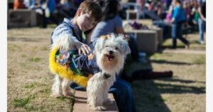 A boy with his dog in the pet parade.