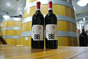 Go Big or Go Home: Big Head wines winning fans at new winery in Niagara ...