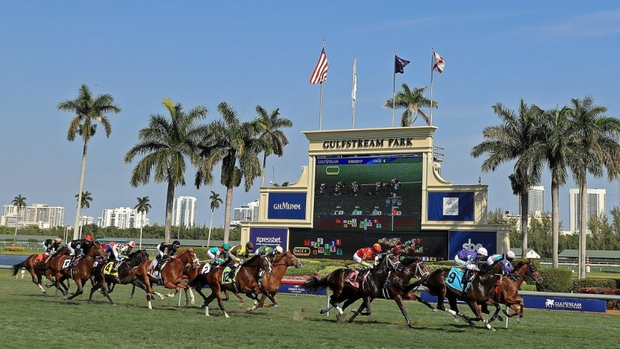 Where Are the Best Places to See Horse Racing in Florida? 2