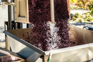 Top 10 Sonoma Wineries You Should Know 6