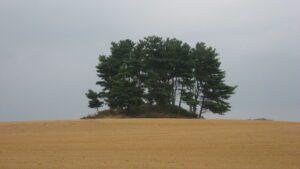 Luthor List Mound