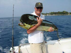 A giant Mahi Mahi fish.