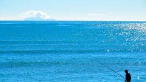 Deep Sea Fishing Galveston