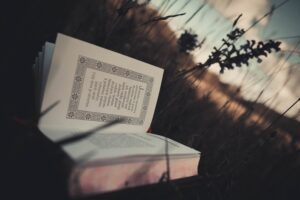 Field and Book