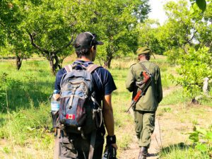 There are different kinds of safaris and walking safari is one of the best