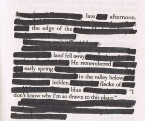 All About Blackout Poetry: 4 Interesting Facts 3