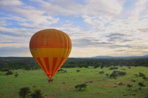 Top 6 Kinds of Safaris 4