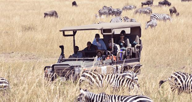 Top 6 Kinds of Safaris 6