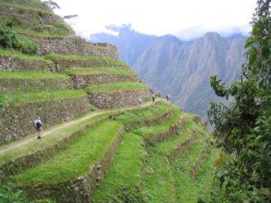 4 Days and Trails of the Machu Picchu Hike 1