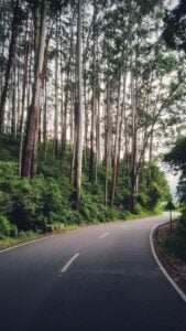 best bikes rides in south india