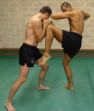 Best Martial Arts For Self-Defense 13