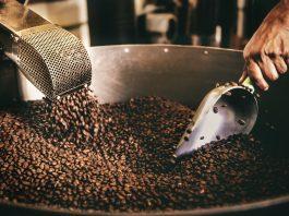 Coffee plantation Tour Rwanda